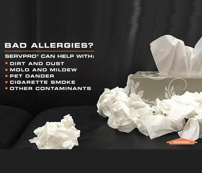 Cleaning Bad Allergies?? We Can Handle That