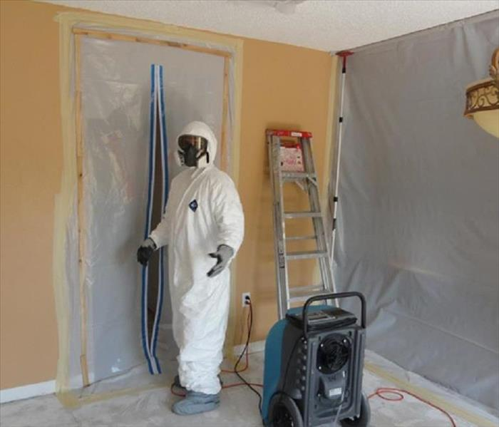 Mold Remediation The Importance of Containment During Mold Removal