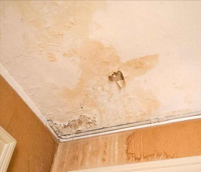 Water Damage Preventing Water Damage in Your Home